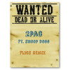 2pac ft. Snoop Dogg - Wanted dead or alive (Flics remix)