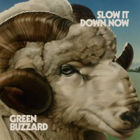 Green Buzzard Slow It Down Now Artwork
