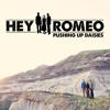 Hey Romeo - Pushing Up Daisies