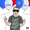 Dj Snake Feat. Lil Jon - Turn Down For What(Mikroshakers Remix)