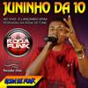 MC Juninho da 10 :: Ao vivo na noite do baile do Martins na Roda de Funk ::