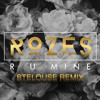 Rozes - R U MINE (SteLouse Remix) [Thissongissick.com Premiere] [Free Download]