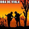 VIOLA SAGRADA