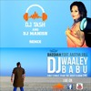 Dj Wale Babu (Remix)