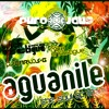 Erich & Mike Ensastigue & DJ Carlos G - Aguanile Miami (Sabrosura Mix) WEB