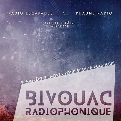 Bivouac Radiophonique 2015