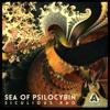 Sea Of Psilocybin - Siculious Rao (Album Mix)