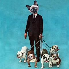 Filteria - Dog Days Bliss (Album Edit)