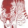 "Analog Birds - ""The Tiger's Grin"" (single)"