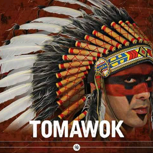 Roots Warrior Sound ft. Original Tomawok - Apache Style !! (Dubplate Version)