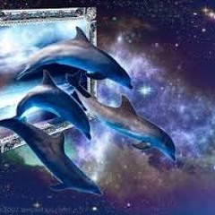 Siam - Dolphins In Space