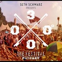 SETH SCHWARZ - 3000Grad Festival 2015 // Waldbühne