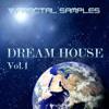 Dream House Vol.1 Demo