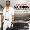Sections- Hurricane Chris Ft. Ty Dolla Sign Produced by DJ Mustard  [DJ Reckless]