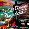12 12 1989 Mezcladita Con Salsa