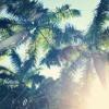 Summer Love Ft Marvin Gaye (Luke James Bootleg)