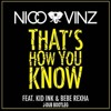 That'5 H0w Y0u Kn0w (Jdub Kick Bass Bootleg) - N1c0 & V1nz mp3