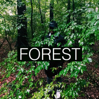 Alista Marq - Forest
