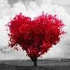Eron Sixe & Lion Bass - Love You(Original Mix)(adelanto)
