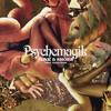 Psychemagik Album Cover