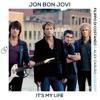 -Jon Bon Jovi - It's My Life (Filippo Di Costanzo & Alex Caruso Private Edit 2015)FREE DOWNLOAD