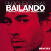 Bailando - Enrique Iglasias Feat. Sean Paul (Peter Gleisner Remix)