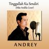 TINGGALAH KU SENDIRI(NIKE ARDILLA)- COVER BY ANDREY