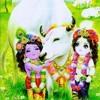 Shri Krishna Govind Hare Murari Hey Naath Narayana Vasudeva
