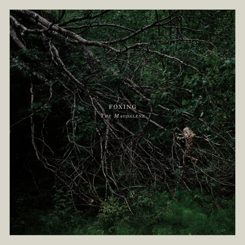 """Foxing - """"The Magdalene"""""""