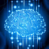 Static Brain