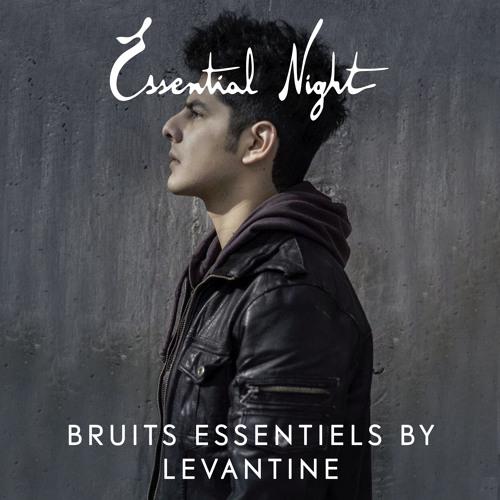 Bruits Essentiels by Levantine
