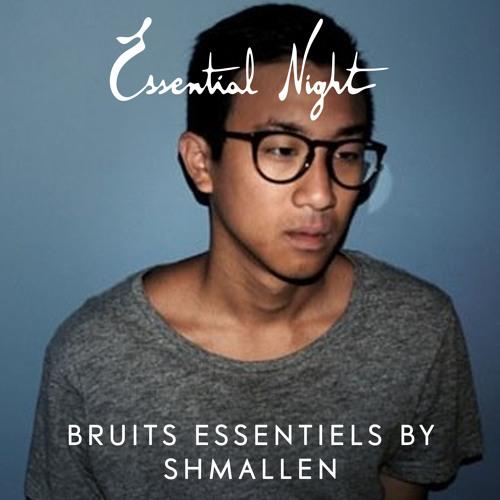 Bruits Essentiels by Shmallen