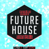 Big Sounds Future House Essentials