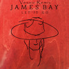 James Bay - Let It Go (Vexaic Remix)