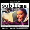 Vin's & Djé - Work That We Do - Sublime (acoustic cover)