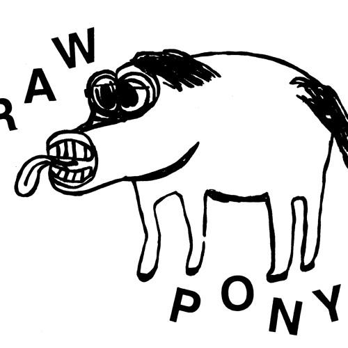 Raw Pony - Bo Diddley