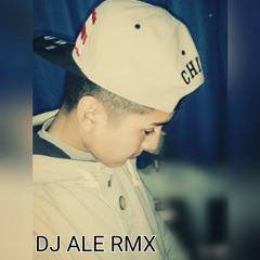 MEGA HMM HAA - [ DJ ALE RMX ]