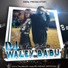 DJ KEMZ - Dj Waley Babu Ft Badshah - We Turnup - REMIX