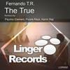 Fernando T.R. - The True (Psychic Element Remix)