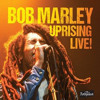 Positive Vibration  / Bob Marley and the Wailers Live in Dortmund 1980