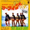 Beach Boys - Surfin USA (8Bits)