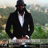 Bugle - Freedom Fighter ▶Brick Mansion Riddim ▶Live MB Music #Reggae 2015