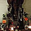 Om Gam Ganapataye Namaha by Kali Samadhi