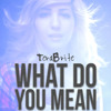 What Do You Mean - Justin Bieber(Pop Punk Cover by TeraBrite)