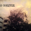 Sino Forever - Old War