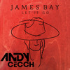 James Bay - Let It Go (Andy Cecch Bootleg)| FREE DOWNLOAD