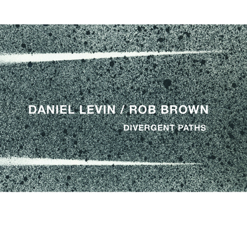 Daniel Levin / Rob Brown - Mutuality (excerpt)
