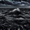 Black Sea x 2010