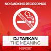 DJ Tarkan - The Meaning (Original Mix)
