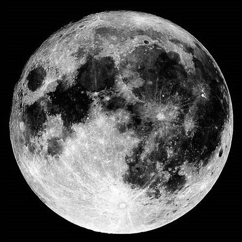ANDREW-MK  White Moon